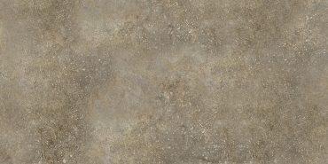 Шафран коричневый настенная